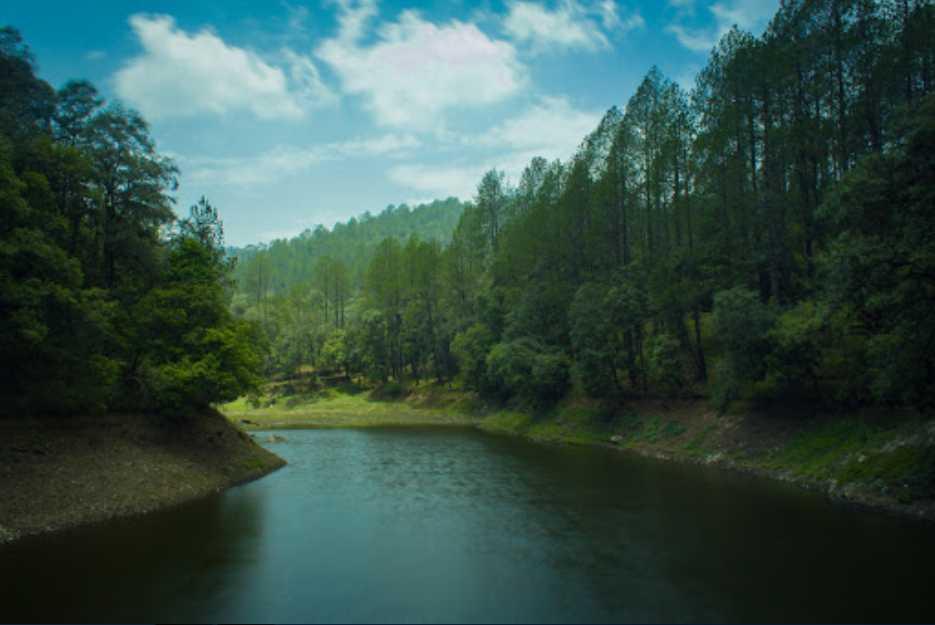 Tranquil Surroundings of Bhalu Dam