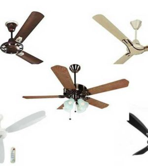 Best for Ceiling Fan